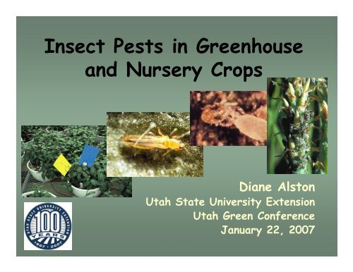 Insect Pests In Greenhouse And Nursery