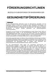 Förderungsrichtlinien bezüglich Subventionen für ... - Land Steiermark