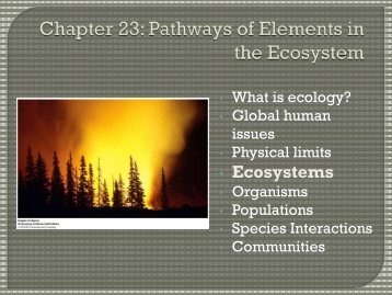 Basic ecosystem principles: Energy flows and nutrients cycle