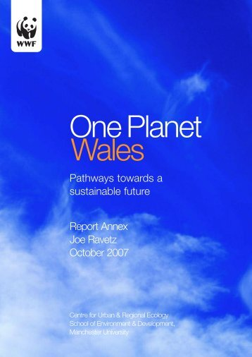 Pathways towards a sustainable future Report Annex Joe ... - WWF UK