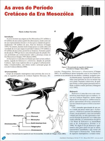 As aves do Período Cretáceo da Era Mesozóica - Atualidades ...