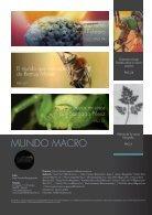 ENTRE CAMARAS - MONOGRÁFICO FOTOGRAFÍA MACRO  - Page 3