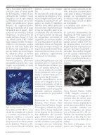 ENTRE CAMARAS - MONOGRÁFICO FOTOGRAFÍA MACRO  - Page 6