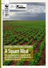 A Square Meal - WWF UK