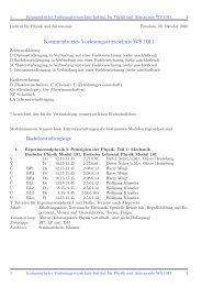 Kommentiertes Vorlesungsverzeichnis WS 1011 - Institut fuer Physik