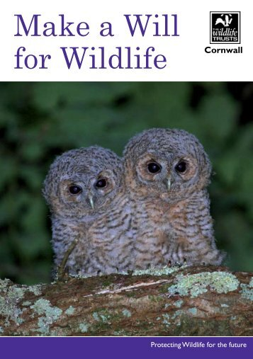 Make a Will for Wildlife Cornwall - Cornwall Wildlife Trust