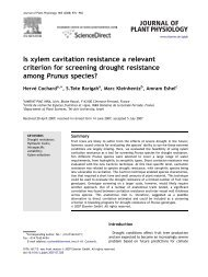 Is xylem cavitation resistance a relevant criterion ... - Hervé Cochard