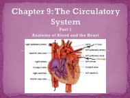 Chapter 9 Part 1 Lecture Notes.pdf