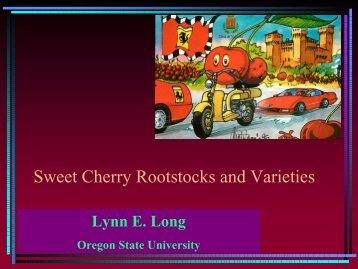 Sweet Cherry Rootstocks and Varieties - Utahhort.org