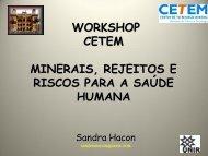 Estudo de caso da cassiterita em Rondônia. Uma ... - Cetem