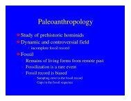Paleoanthropology - De Anza College