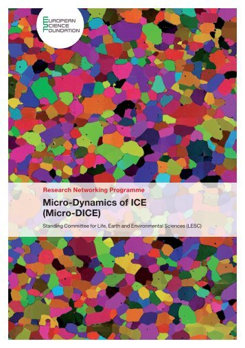 Micro-Dynamics of ICE (Micro-DICE) - European Science Foundation