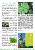 Afdeling Dronten - Page 7