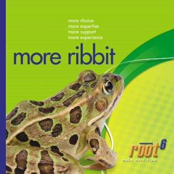 Download our company brochure - Root6