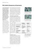 cj okt04_roh_041116 - vonRoll casting - Seite 4