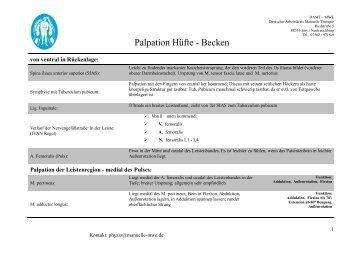 Palpation Hüfte - Becken - MWE Physio