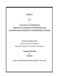 BUSINESS & ENTERPRISES DIVISION - The Mauritius Chamber of ...