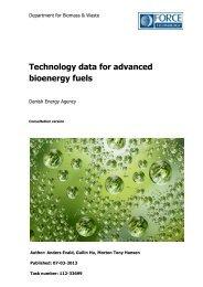 Technology data for advanced bioenergy fuels