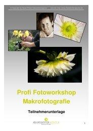 Einführung in die Makrofotografie - Glanzlichteragentur