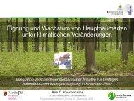 Vasconcelos_Eignung und Wachstum von Hauptbaumarten.pdf