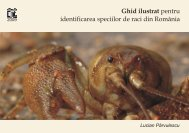 2009 - Crayfish of Romania