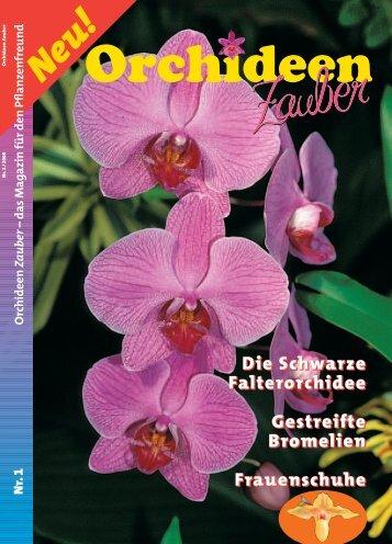 Ausgabe 1-2008 - OrchideenZauber