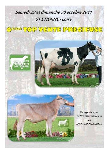 Top Précieuse - Web-agri