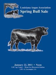 Louisiana Spring Bull Sale - Angus Journal