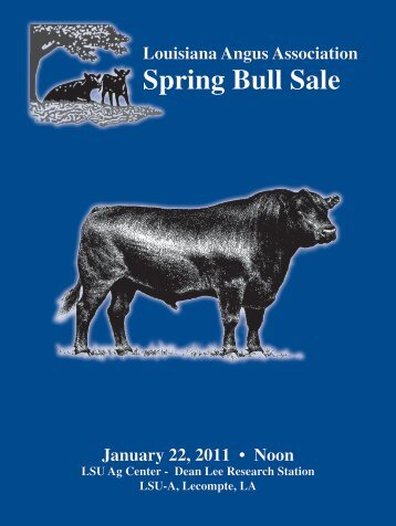 Louisiana Spring Bull Sale - Angus Journal