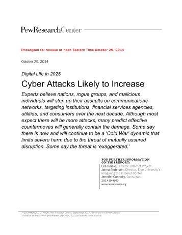 Elon Pew Cyber Attacks 2025