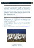 Un voyage 110% nature au Canada - Synopsism - Page 4