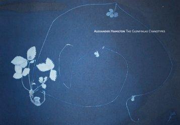 Download as PDF - Alexander Hamilton
