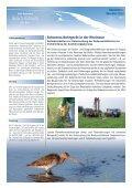 Screen-Version (520 KB) - Rhein Nebenrinne Bislich Vahnum - Seite 3