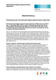 Medienmitteilung 17.11.2008.pdf - Zukunft Alpenrhein