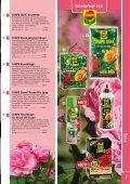 Rosenpflege von - Kiebitzmarkt - Seite 2