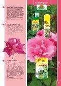 Rosenpflege von - Kiebitzmarkt - Seite 6