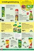Schädlingsbekämpfung - Kiebitzmarkt - Seite 2