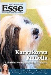 Esse 16/2013 (pdf) - Espoon seurakuntasanomat
