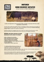 mofemedi rhino recovery initiative - African Conservation Experience