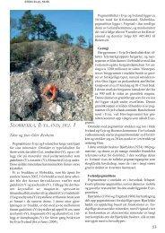Slobrekka, Iveland. Del 1 pdf - NAGS
