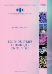 Industries Chimiques - Tunisie industrie