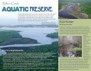 Pellicer Creek - Florida Department of Environmental Protection