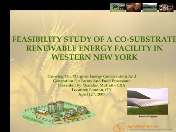 feasibility study of a co-substrate renewable energy facility in ...