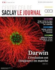 Cellule gliale fournissant des protéines (en vert ... - CEA Saclay