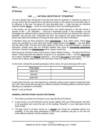 Supersize Me Worksheet   Mychaume additionally Fillable Online ceellis aurorak12 Super Size Me Film Worksheet as well Supersize me additionally Nutrition   Supersize Me Worksheet   MAFIADOC furthermore essay on me what are the most epic college application essays quora furthermore super size me summary   Mendi charlasmotivacionales co in addition Supersize Me Worksheet Answers   Free Printables Worksheet besides Supersize Me Worksheet Answer Key New Super Size Me Film Archives Wp likewise Super Size Me Worksheet Answers Luxury Super Size Me Worksheet – as well Name in addition Supersize Me Worksheet High Answers Worksheets – cycconteudo co likewise SUPER SIZE ME   ESL worksheet by sardine additionally  together with Supersize Me Video Worksheet Answers   Free Printables Worksheet besides Movie worksheet  Super Size Me furthermore supersize me worksheets answers – cycconteudo co. on supersize me video worksheet answers
