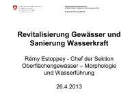 Revitalisierung Gewässer und Sanierung Wasserkraft - VSA