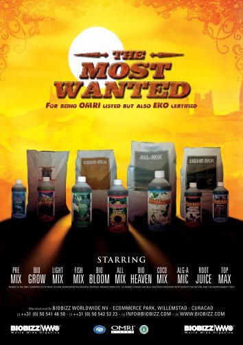 Product Flyer A5 German-01 Most Wanted
