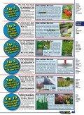 Ein Teich entsteht - Naturagart - Seite 4