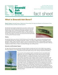 fact sheet - Emerald Ash Borer