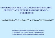 pdf - 9.5 MB - Interactions between Ocean Biogeochemistry, Physics ...